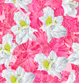 eamless texture rhododendron pink and white vector image