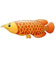 Arowana fish vector image