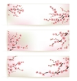 Set of Beautiful Floral Banners EPS 10 vector image