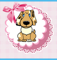 doily dog vector image vector image