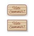 hello summer wooden boards vector image