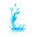 water splash on white vector image