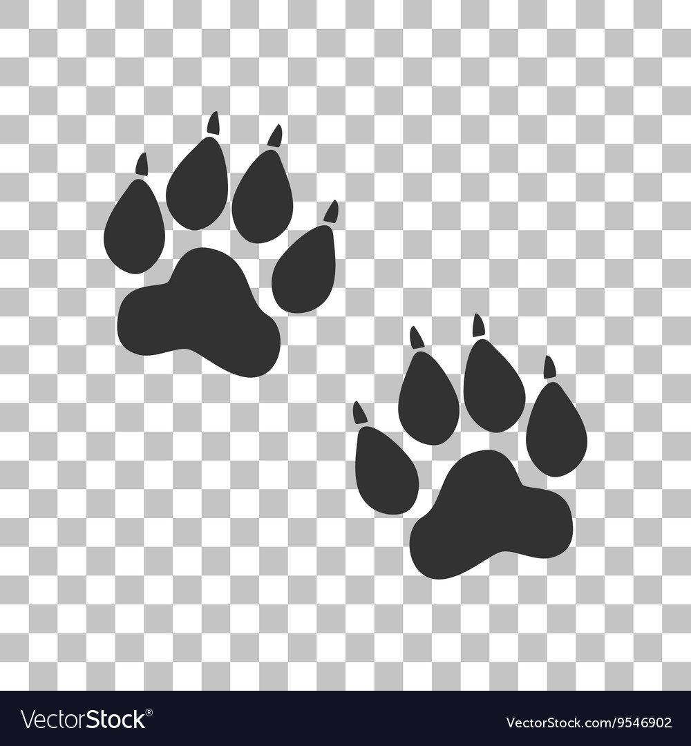 Animal tracks sign dark gray icon on transparent vector