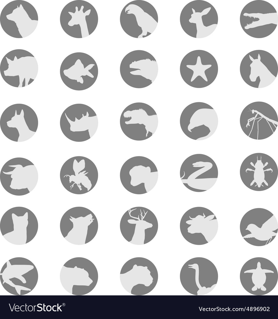 Animals and insects avatar collection vector