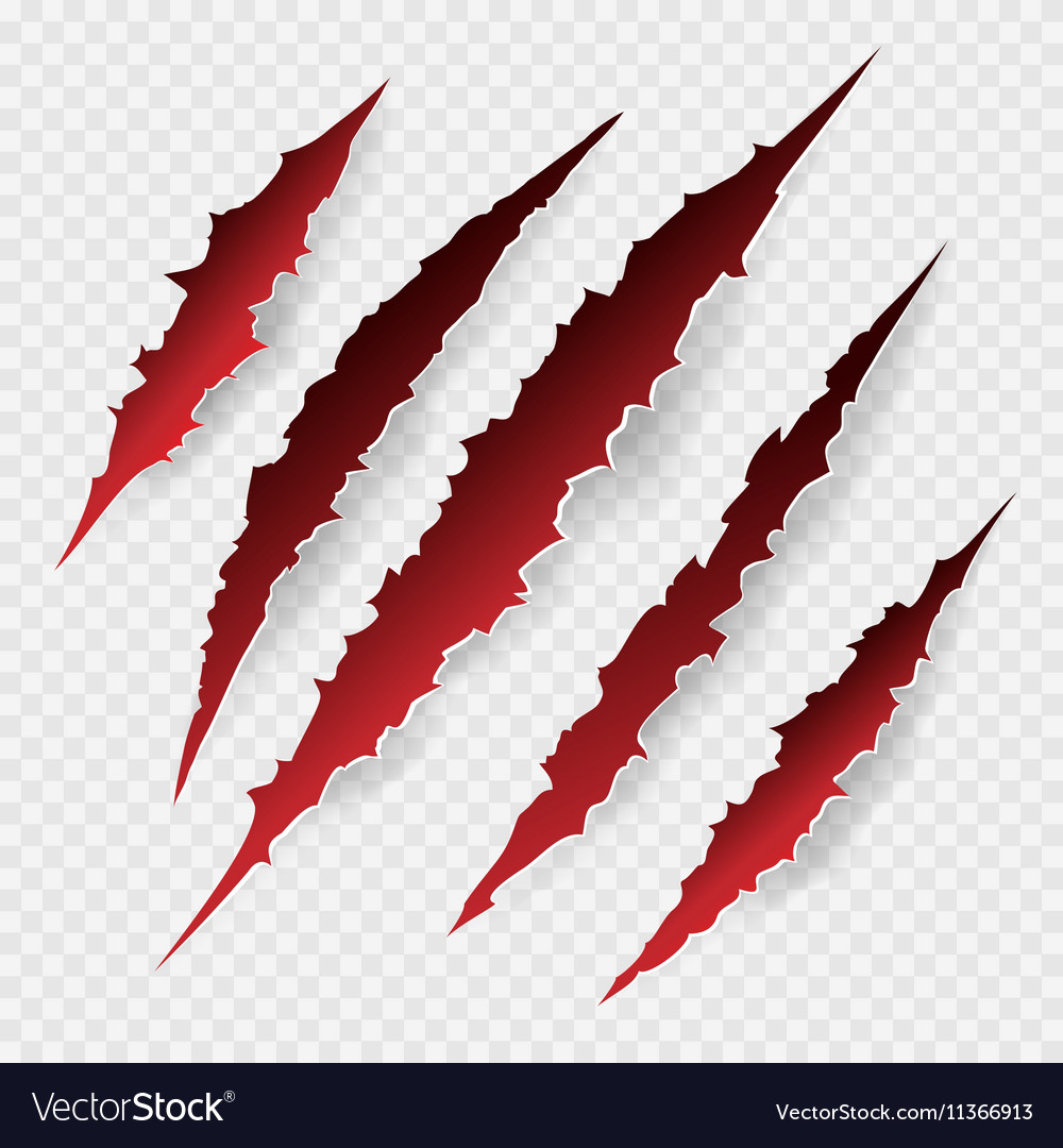 Scratches isolated on transparent background vector