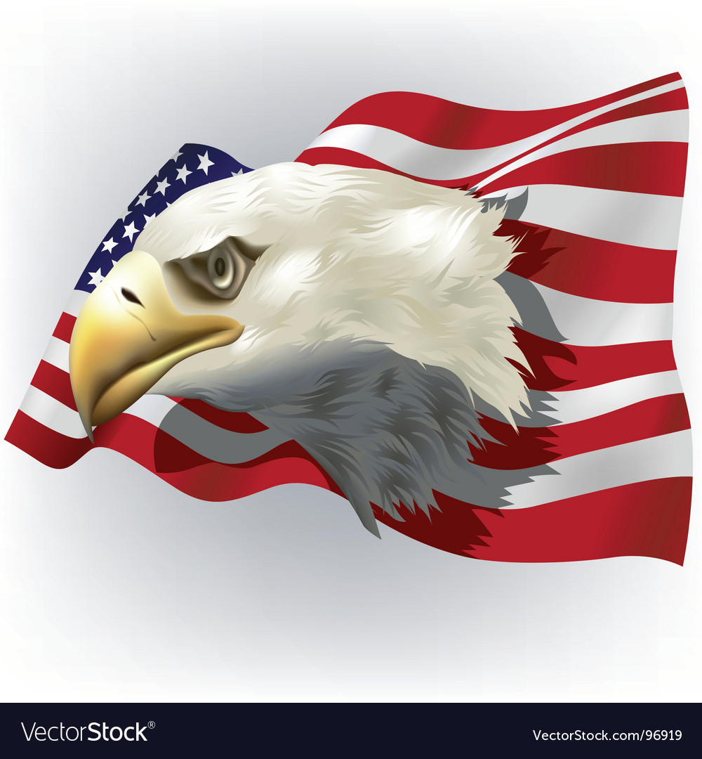 Us patriotic theme vector