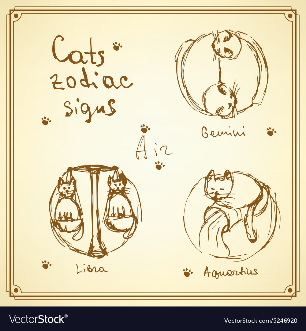 Sketch cats zodiac signs in vintage style vector