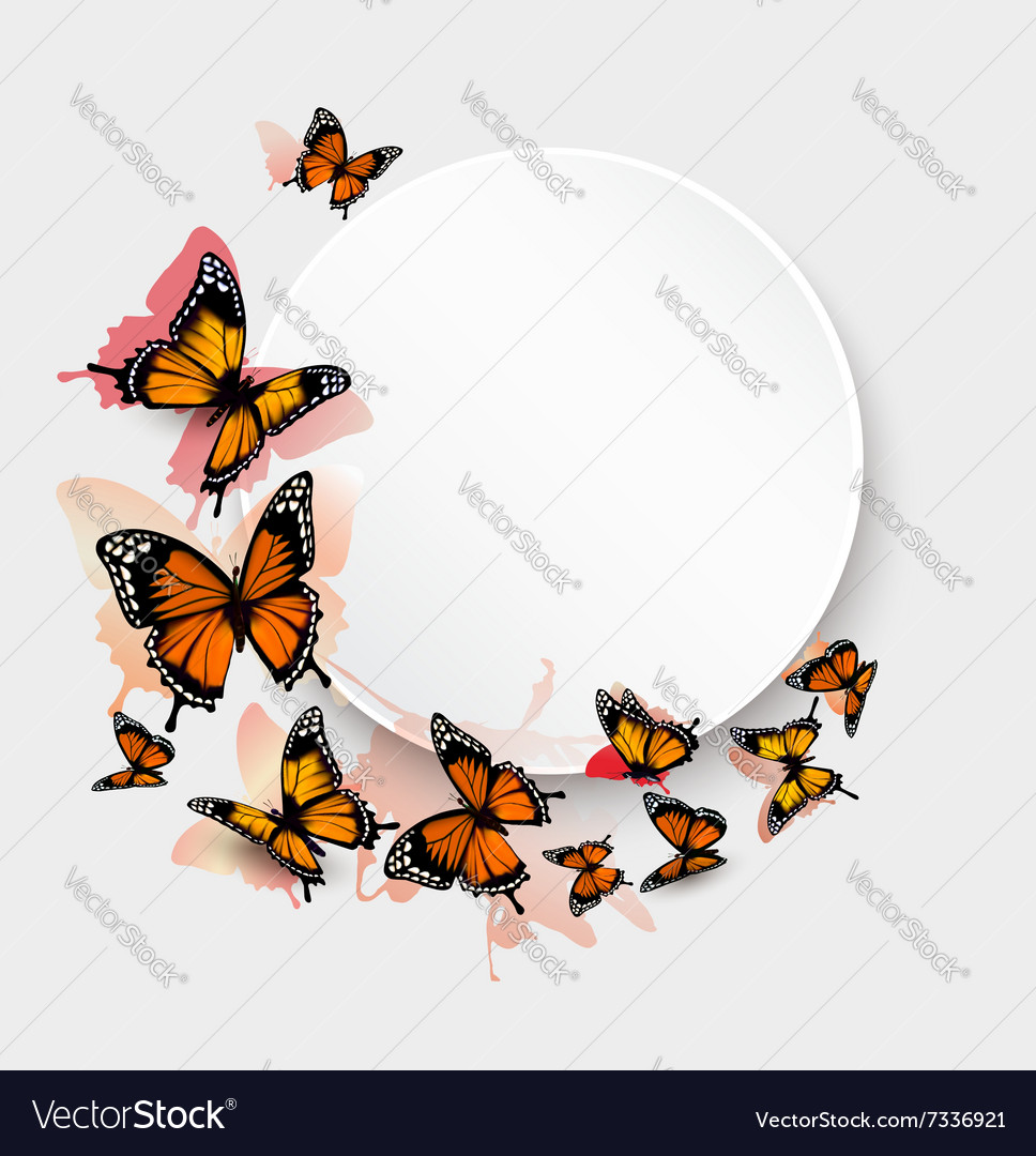 Beautiful butterfly background and gift card vector