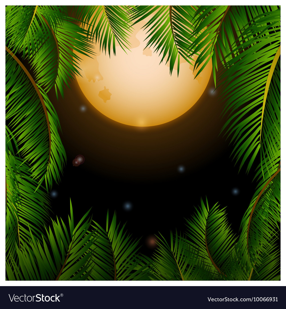 Big tropical moon and palm trees background vector