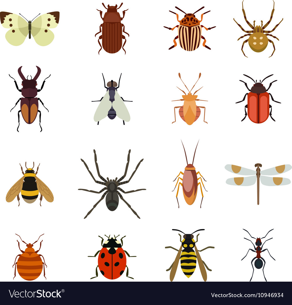 Insects icons flat set vector