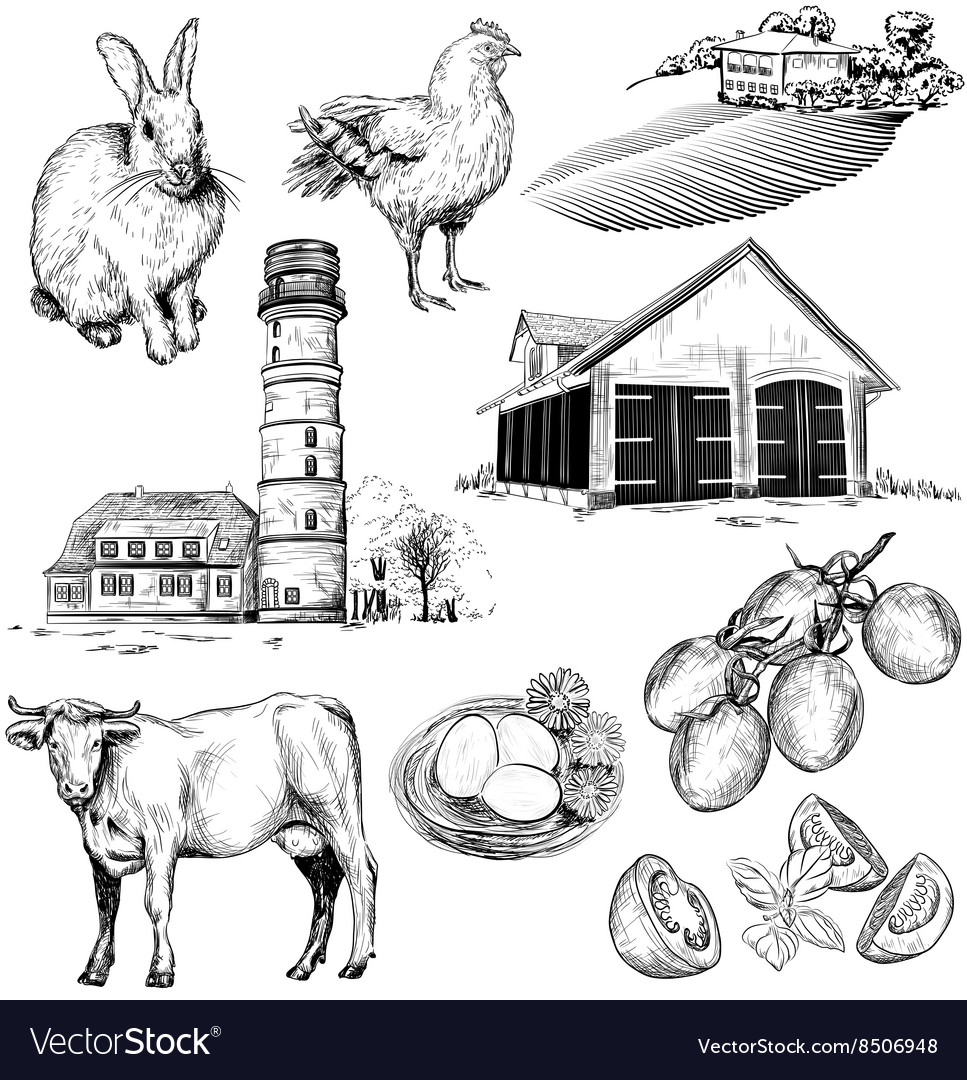 Hand drawn set of farm and agriculture icons vector
