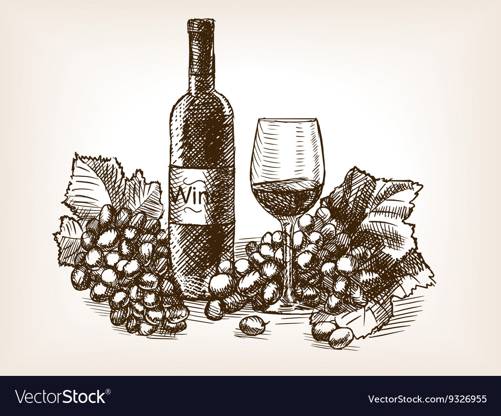 Wine still life sketch style vector
