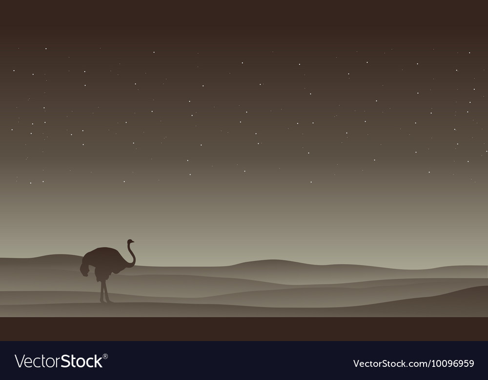 Silhouette of ostrich in desert vector