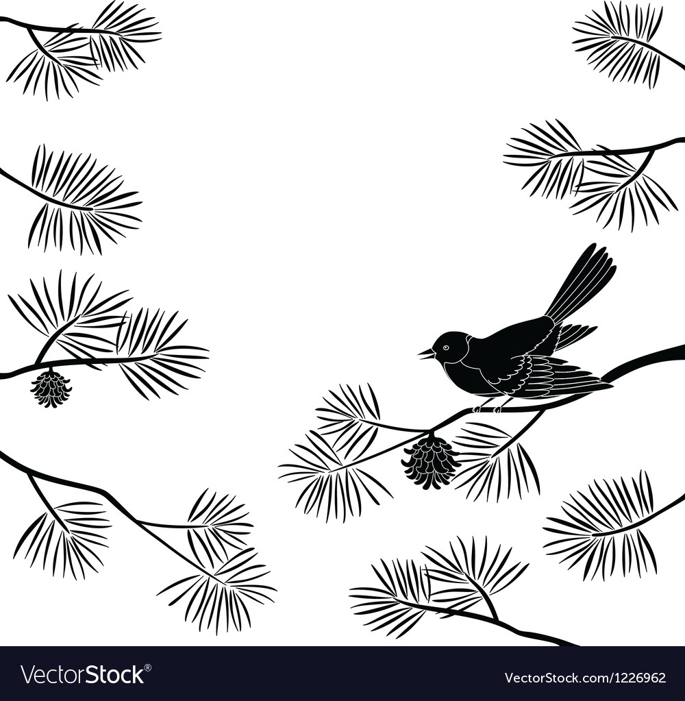 Titmouse on pine branch cutout vector