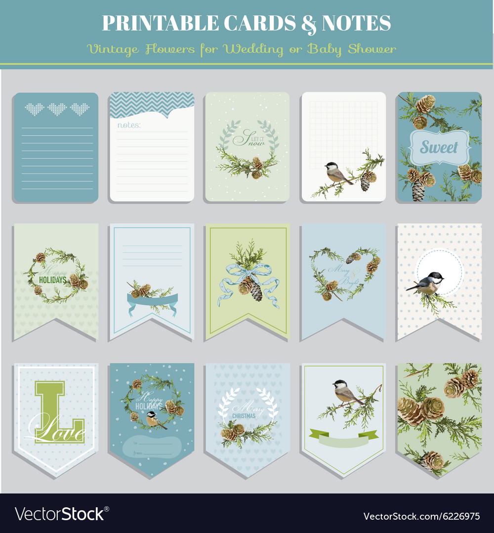 Cards tags and labels  christmas winter birds vector