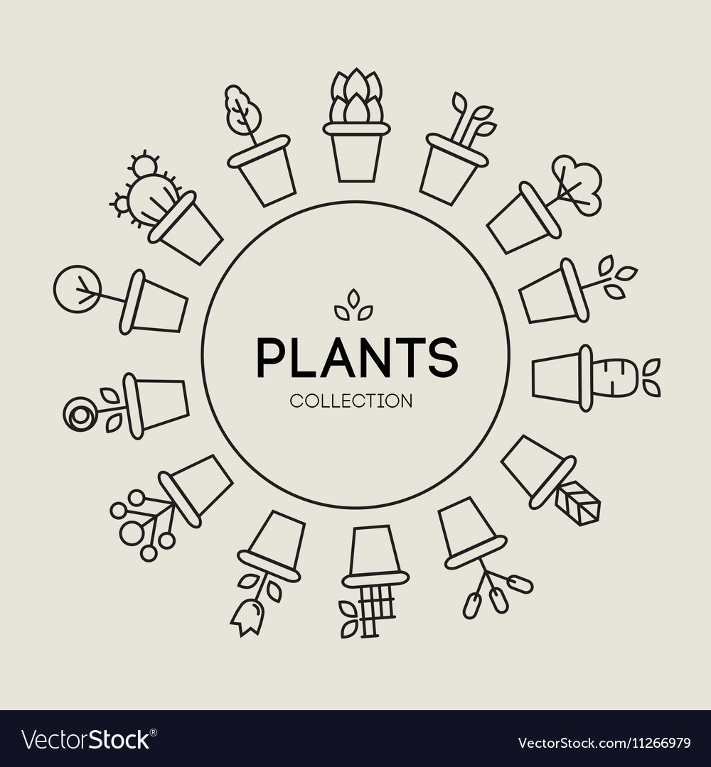 Icons of pot plants garden vector