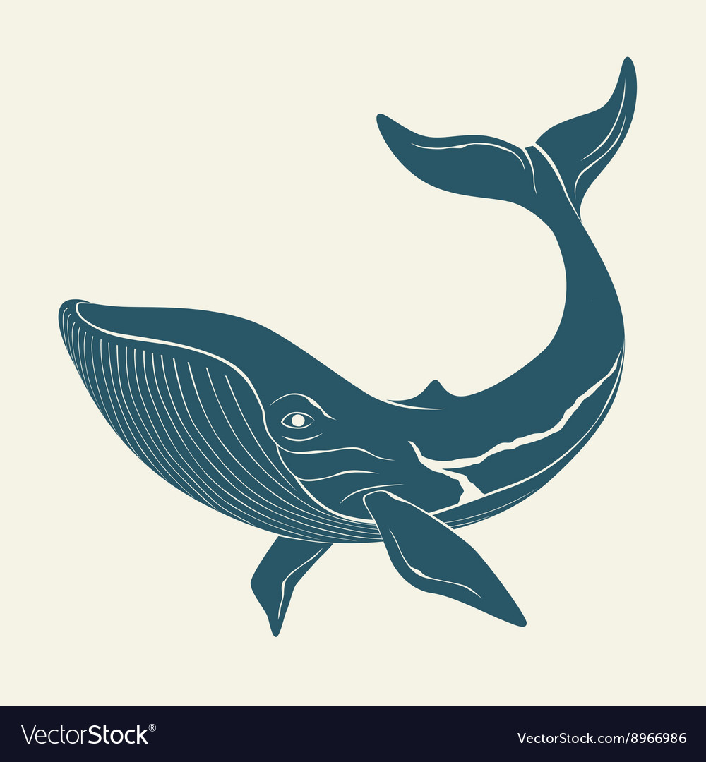 Silhouette of whale template for labels vector