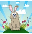 Rabbit on the flower meadow vector image