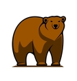 Big brown grizzly or brown bear vector image