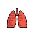 Human organ flat icon vector image