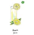 watercolor glass of summer lemon juice vector image