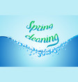 spring cleaning realistic soap bubbles vector image