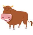 bull farm animal vector image vector image