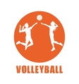 Volleyball sport and hobby design vector image