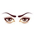 lady eyes vector image