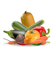 collection of vegetables vector image vector image