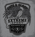 Extreme sport eagle crest shield t-shirt graphic vector image
