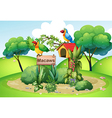 Two colorful parrots at the hill near a signboard vector image vector image