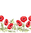 Bunch poppy flowers on a white background vector image