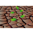 sprout in dry land vector image