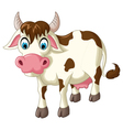 cow cartoon for you design vector image vector image