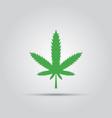 green marijuana leaf isolated colored icon vector image