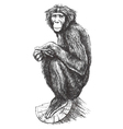 Hand drawn monkey sitting on the tree vector image
