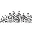 silhouette wildflowers on white vector image