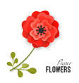 paper flower lush red peony on small stem with vector image