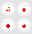 cherry strawberry pomegranate red apple vector image