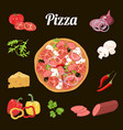 pizza and ingredients vegetables salami cheese vector image