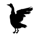 goose silhouette vector image