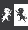 two heraldic lions rampant vector image