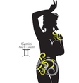 Silhouette of a girl interpretation zodiac sign vector image vector image
