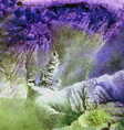 Abstract watercolor background stain water vector image