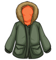 Parka vector image