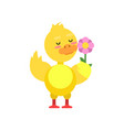 funny little yellow duckling with pink flower vector image