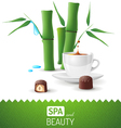 spa and beauty vector image vector image