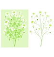 green branch with white flower vector image vector image