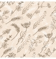 Seamless pattern with wild plants on a beige vector image